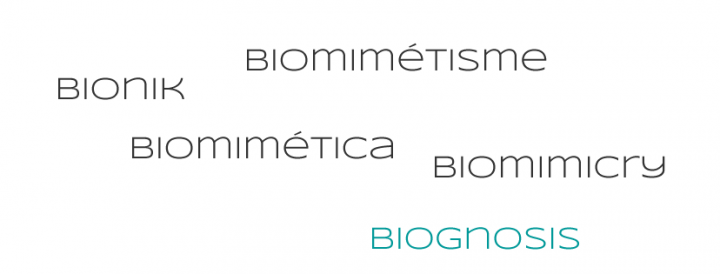 Biognosis Synonyms