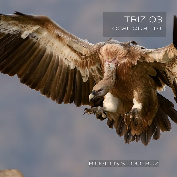 Biognosis VULTURE (TRIZ 03 Local Quality)