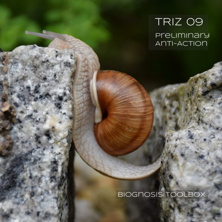 Biognosis SNAIL (TRIZ 09 Preliminary Anti-Action)