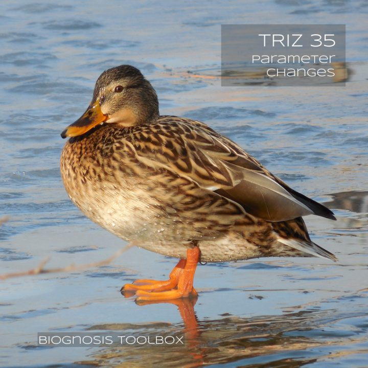 Biognosis DUCK (TRIZ 35 Parameter Changes)