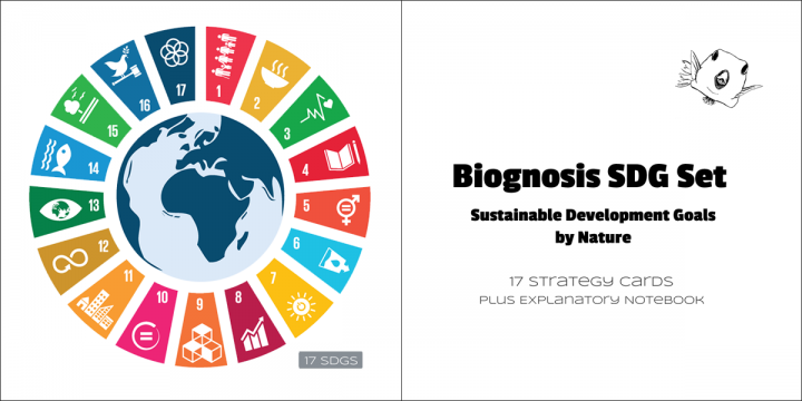 17 Sustainable Development Goals Icons & Set Contents