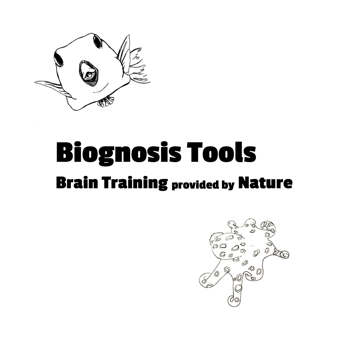 "Drawing of boxfish and octopus, with slogan ""Biognosis Tools - Brain Training provided by Nature"""
