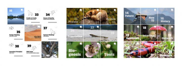 Instagram Screenshots (3x3 postings)