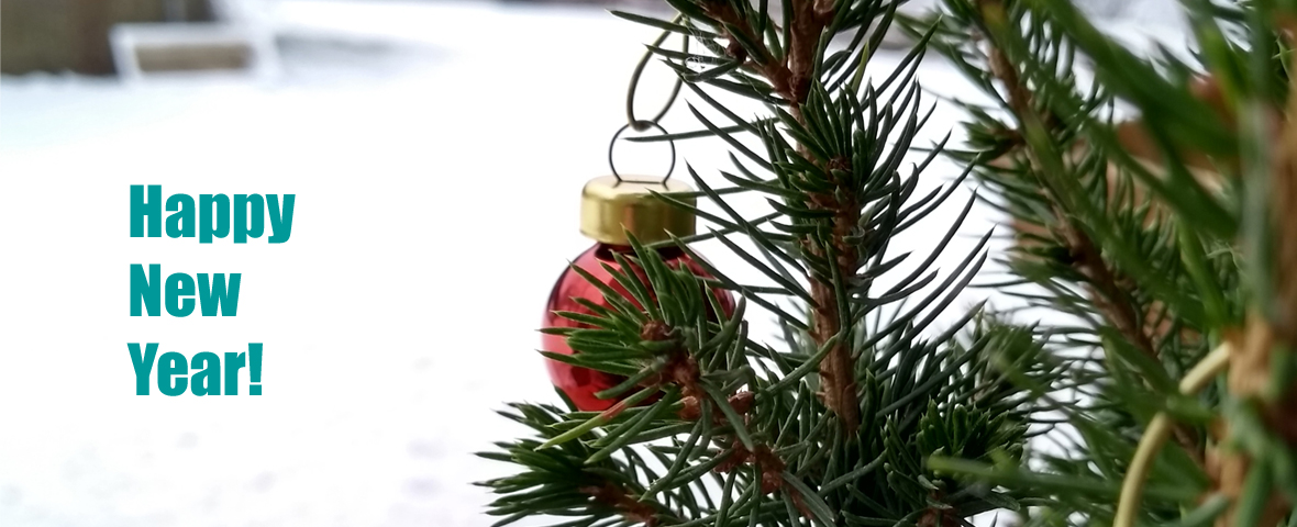 picture showing a small red glitter ball in a conifer, in the background a snowy landscape.
